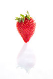 Strawberry on a white background with reflection. Photo of Strawberry on a white background with reflection Stock Photography