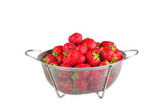 Strawberry on white background Stock Photography