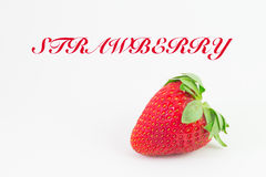 Strawberry with white background and writing. Strawberry in white background with snell roundback black writing of strawberry Royalty Free Stock Photos