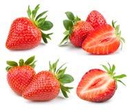 Strawberry on white stock image