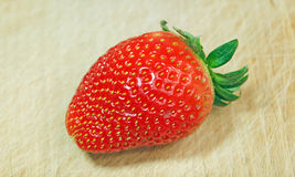 Strawberry on Wood Royalty Free Stock Photos