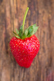 Strawberry on wooden background Stock Photography
