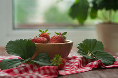 Strawberry in a wooden bow Royalty Free Stock Image
