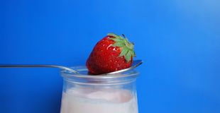 Strawberry yogurt Stock Images