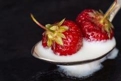 Strawberry in yogurt on a dark background. Macro close-up. Strawberry in yogurt on a dark background. Macro close-up Royalty Free Stock Photos