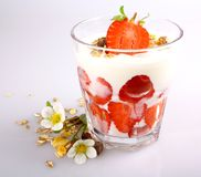 Strawberry with yogurt in glass and cereal Royalty Free Stock Photography
