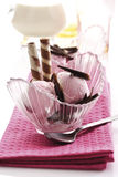 Strawberry yogurt ice cream with chocolate Royalty Free Stock Photos