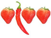 strawberryes красного цвета перца chili свежие Стоковая Фотография RF