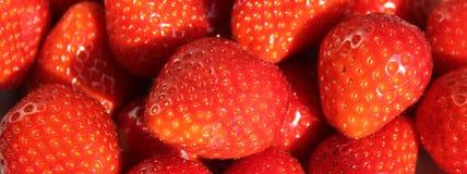 Strawberrys Στοκ Εικόνες