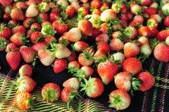 Strawberrys Стоковое Изображение