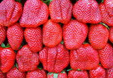 Strawberrys Fotografia de Stock Royalty Free