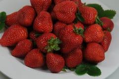 Strawberrys Zdjęcie Royalty Free