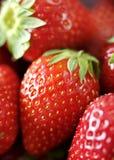 strawberrys Arkivbilder