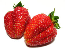 Strawberrys Photo stock