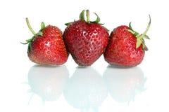 Strawberrys fotos de archivo libres de regalías