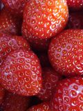 Strawberrys Royaltyfria Bilder