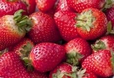 strawberrys Royaltyfria Foton
