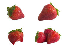 Strawberrys frais photographie stock