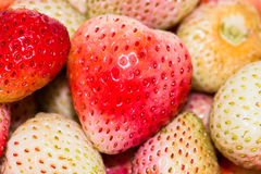 Strawberrys red and white. Stock Photos