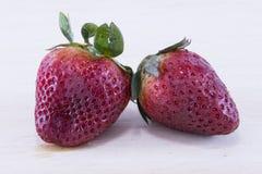 Strawberrys Tropisch Fruit Stock Fotografie