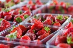 Straweberries frais photo libre de droits