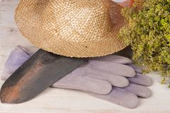 Strawhat,shovel,gardengloves and thyme Royalty Free Stock Images