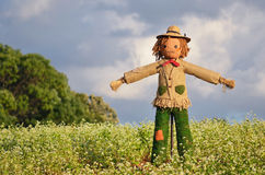 Strawman in farm Stock Images
