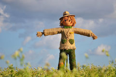 Strawman in farm Royalty Free Stock Image