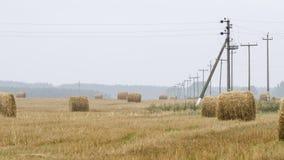 Straws and pylons Stock Photos
