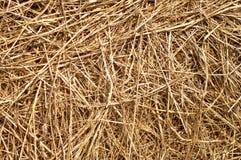 Straws texture Stock Photos