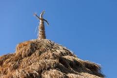 Strawy tak av landslantgårdhuset Royaltyfri Fotografi