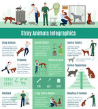 Stray Animals Infographics Set. With the calculation value on veterinary services population number of animals from a shelter who gained home vector Stock Photo