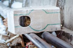 People making a house out of a box for a homeless cat. Stray animals in winter, homeless cat sitting on a heating main, homeless frozen cat warms on pipes Royalty Free Stock Image