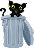 Stray Black Cat. Peeking out of the trash can Stock Photo