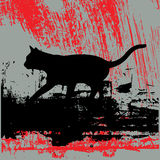 Stray Cat Grunge. Background grunge illustration with black cat Royalty Free Stock Photos