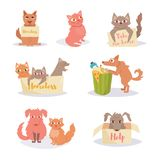Stray cats and dogs. Homeless. Set, group. Vector. Cartoon.  art on white background Flat Stock Image