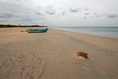 Stray dog next to small fishig boat on Nilaveli beach in Trincomalee Sri Lanka. Asia royalty free stock image