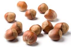 Stray hazelnuts royalty free stock photos