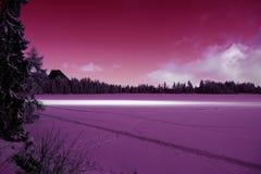 Strbske普莱索冻结的积雪的表面冬天视图  图库摄影