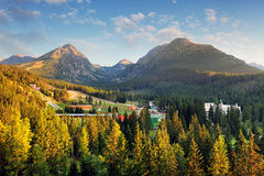 Strbske pleso with forest and mountain, aerial view, Slovakia stock photography