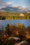 Landscape of pure wild nature of mountain lake in Slovakia. Strbske Pleso on a sunny day, shot from other bank of the lake. Spring. Shot with film camera with Royalty Free Stock Images