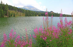 Strbske pleso - tarn in High Tatras, Slovakia Royalty Free Stock Image