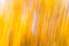 Streaky Yellow Texture Royalty Free Stock Photography