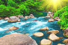 Stream. Blue water stream. Phong Nha - Ke Bang National Park. Vietnam Royalty Free Stock Image