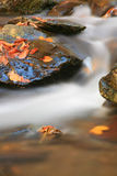 Stream. In the Appalachian Mountains in Autumn royalty free stock photo