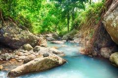 Stream. Among rainforest.Bali. Indonesia Stock Photo