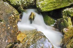 Stream. Section of an area of the River Eume in Galicia Royalty Free Stock Image