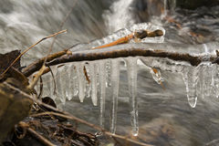 Stream. In freezing weather with ice and twigs Royalty Free Stock Photography