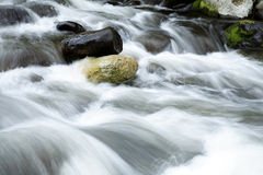 Stream. Water flowing over rocks in stream Stock Photography