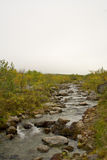 Stream. Photo by in the northern mountains in the late summer. Mountain stream and fog looming Royalty Free Stock Photos